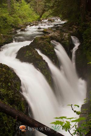Sol Duc Falls #1